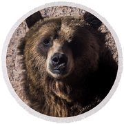 Grizzly Round Beach Towel