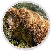 Grizzly On The River Bank Round Beach Towel