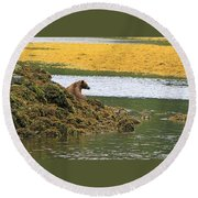 Grizzly Relaxing Round Beach Towel