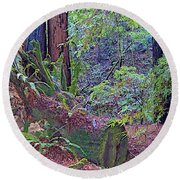 Ground Level Landscape In Armstrong Redwoods State Preserve Near Guerneville-ca Round Beach Towel