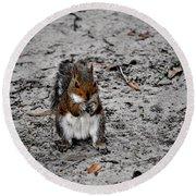 Ground Squirrel Round Beach Towel