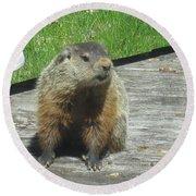 Groundhog Holding A Stick Round Beach Towel