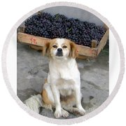 Guardian Of The Grapes Round Beach Towel
