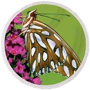 Gulf Fritillary Butterfly Agraulis Round Beach Towel