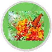 Gulf Fritillary Butterfly On Pride Of Barbados Round Beach Towel
