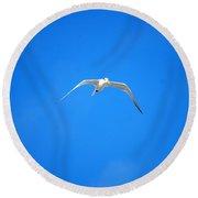 Gull 001 Round Beach Towel