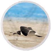 Gull At Lido Beach Iv Round Beach Towel