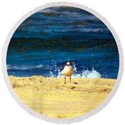 Gull Goer Round Beach Towel