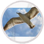 Gull - Out Of Bounds Round Beach Towel