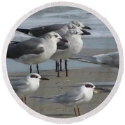 Gulls And Terns Round Beach Towel