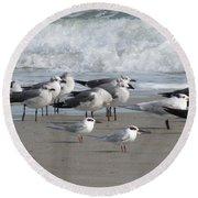Gulls Terns Skimmers Round Beach Towel