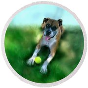 Gus The Rescue Dog Round Beach Towel