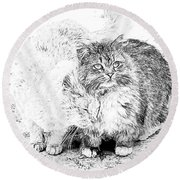 Gutter Kitties Seven Round Beach Towel