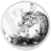 Gutter Kitties Six Round Beach Towel