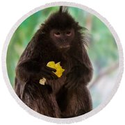 Hairy Monkey Round Beach Towel