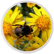 Hairy Visitor Round Beach Towel