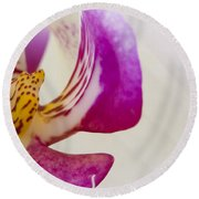 Half An Orchid Round Beach Towel