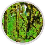 Hall Of Moss Round Beach Towel by Benjamin Yeager