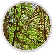 Hall Of Mosses In Hoh Rain Forest In Olympic National Park-washington Round Beach Towel