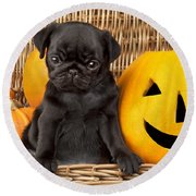Halloween Pug Round Beach Towel by Greg Cuddiford