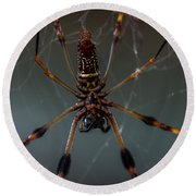 Halloween Spider Round Beach Towel