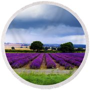 Hampshire Lavender Field Round Beach Towel