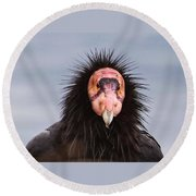 Handsome California Condor Round Beach Towel