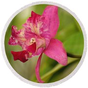 Hanging Orchid Round Beach Towel