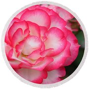 Hannah Gordon Floribunda Rose Round Beach Towel
