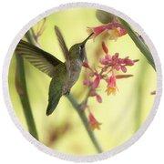 Happy As A Hummingbird  Round Beach Towel