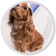Happy Birthday Dog Round Beach Towel by Edward Fielding