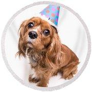 Happy Birthday Puppy Round Beach Towel by Edward Fielding