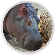 Happy Hippo Round Beach Towel