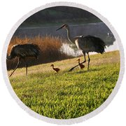 Happy Sandhill Crane Family - Original Round Beach Towel