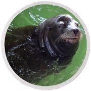 Happy Seal Round Beach Towel