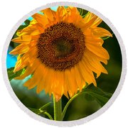 Happy Sunflower Round Beach Towel