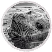 Harbor Grey Round Beach Towel
