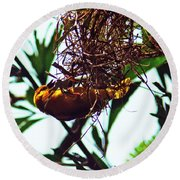 Hard Working Bird Round Beach Towel