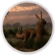 Hares In The Wetlands Round Beach Towel