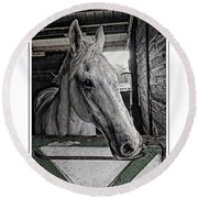 Harley In The Barn Round Beach Towel
