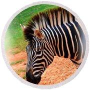 Hartman Zebra Round Beach Towel