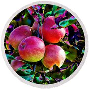 Harvesting Apples Round Beach Towel