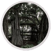 Hawaiian Banyan Trees Round Beach Towel