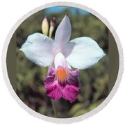 Hawaiian Orchid Round Beach Towel