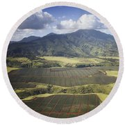 Hawaiian Pineapple Fields Round Beach Towel
