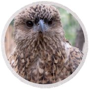 Brown Hawk Face Profile Round Beach Towel