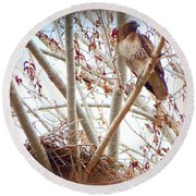 Hawk Nesting IIi Round Beach Towel
