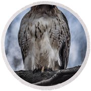 Hawk Red Tailed Round Beach Towel