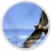 Hawk - Screams Of The Ocean Round Beach Towel