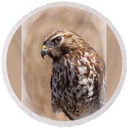 Hawk - Sphere - Bird Round Beach Towel